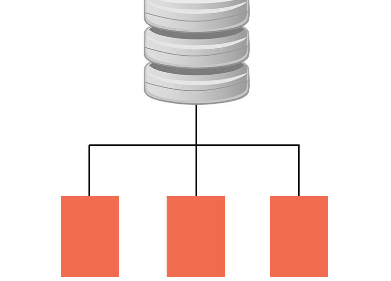 Database Definitions and Schema
